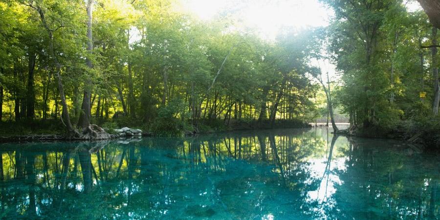 Best Springs in Gainesville, FL